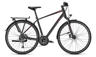 Raleigh Rushhour 2.0 von Drahtesel Fahrräder und mehr..., 23611 Bad Schwartau