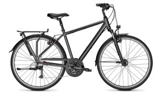 Raleigh Road Classic 24G von Drahtesel Fahrräder und mehr..., 23611 Bad Schwartau