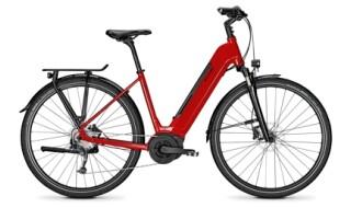 Raleigh Kent9 von Fahrrad-Welt GmbH, 27232 Sulingen