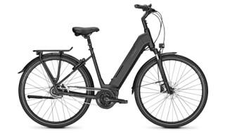 Raleigh Bristol 8 von Fahrrad-Welt GmbH, 27232 Sulingen