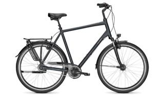 Raleigh Chester 8R XXL von Drahtesel Fahrräder und mehr..., 23611 Bad Schwartau