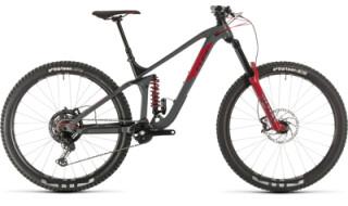 Cube Stereo 170 TM 29 grey´n´red 2020 von Fahrrad Imle, 74321 Bietigheim-Bissingen
