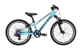 Conway MS 200 FG von Bike & Fun Radshop, 68723 Schwetzingen