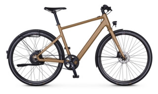 Rabeneick TX-E Urban von Drahtesel Fahrräder und mehr..., 23611 Bad Schwartau