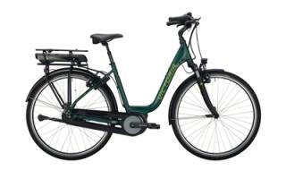 Victoria RAD E-TREKK. 5.8 DEEP 7-GG MINT GREEN/GREY von bikeschmiede-Ahl, 63628 Bad Soden Salmünster