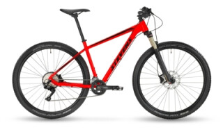 Stevens Applebee von Bike & Sports Seeheim, 64342 Seeheim-Jugenheim