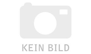 Gazelle Paris von Stefan's Fahrradshop GmbH, 26427 Esens