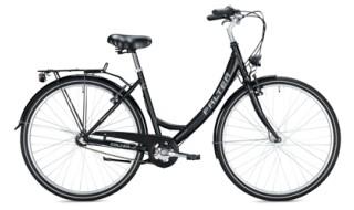 FALTER C 1.0 von Mattheß` Bike Shop, 06901 Kemberg