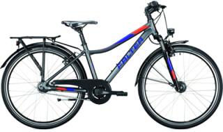 FALTER FX 607 ND von Zweirad-Wichmann, 38440 Wolfsburg