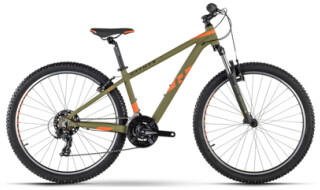 R Raymon Sevenray 1.0 von Fahrrad Meister Benny Leussink, 28832 Achim