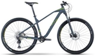 R Raymon HardRay Nine 6.5 von Rad-Sportshop Odenwaldbike, 64653 Lorsch
