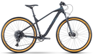 Raymon HardRay Nine 6.0 - 2021 von Erft Bike, 50189 Elsdorf