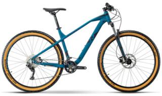 Raymon HardRay Nine 4.0 - 2021 von Erft Bike, 50189 Elsdorf