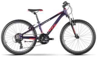 Raymon FourRay 1.0, Purple Metallic/Red von Bike & Co Hobbymarkt Georg Müller e.K., 26624 Südbrookmerland
