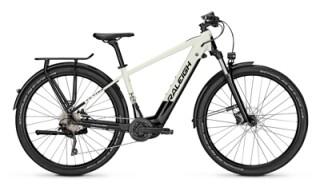Raleigh Dundee 10-Gang FL 500Wh von Fahrrad Wollesen GmbH & Co. KG, 25927 Aventoft
