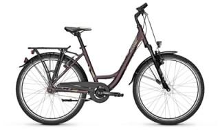 Raleigh Schoolmax 7-Gang von Fahrrad Wollesen GmbH & Co. KG, 25927 Aventoft