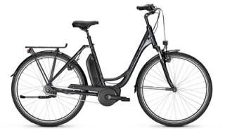 Raleigh Jersey 7-Gang RT 400Wh von Fahrrad Wollesen GmbH & Co. KG, 25927 Aventoft