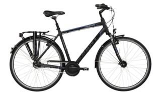 GIANT Tourer von Zweirad-Center Schicketanz, 04924 Bad Liebenwerda