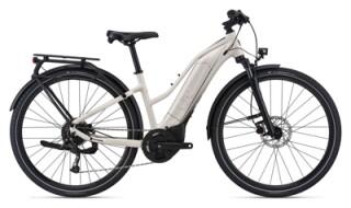 Liv Amiti E+3 von Fahrrad-Welt GmbH, 27232 Sulingen