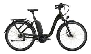 Victoria eManufaktur 9.8 von Bike & Fun Radshop, 68723 Schwetzingen