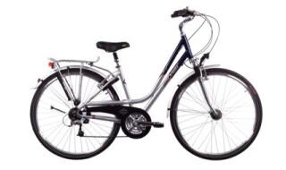 Raleigh Exceter von Mattheß` Bike Shop, 06901 Kemberg