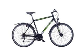 Morrison X3.0 von Lamberty, Fahrräder und mehr, 25554 Wilster
