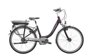 Diamant Achat+ von Freds Bike Shop, 83098 Brannenburg
