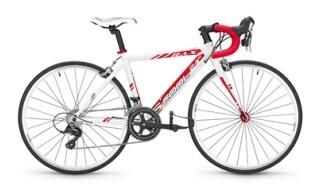S´cool Rax 24 von Radsport Hellweg, 26683 Saterland