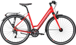 KOGA Koga F3 5.0S von Lamberty, Fahrräder und mehr, 25554 Wilster