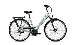 Raleigh Executive 24 von Vilstal-Bikes Baier, 84163 Marklkofen