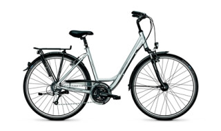 Raleigh Executive von DANNENBERG Bikes + Pedelecs, 30890 Barsinghausen
