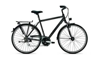 Raleigh Executive 21 von Rad+Tat Fahrradhandel GmbH, 59174 Kamen