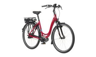 Riese und Müller Swing Vorführ und Leihräder von Fahrradhaus O.K.-Cycling, 67590 Monsheim
