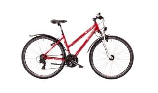 Morrison X 2.0 Damen von Zweiräder Stellwag, 64711 Erbach