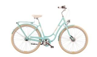 Falter R 4.0 von Fahrrad Dreieich, 63303 Dreieich