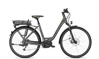 Raleigh Raleigh Stoker B8 - 400Wh - Bosch Performance Line von Bike Treff, 33604 Bielefeld