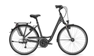 Raleigh OAKLAND PREMIUM 27G von Bike Treff, 33604 Bielefeld