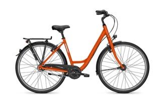 Raleigh Devon 8 von Lamberty Fahrräder & mehr e.K., 25554 Wilster