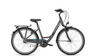 Raleigh UNICO PLUS von Profile Wallner, 83301 Traunreut / Matzing