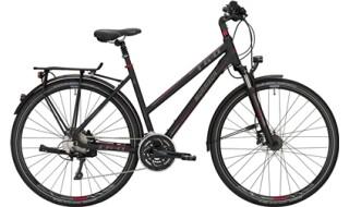 MORRISON T 6.0 von Das Fahrrad, 30853 Langenhagen