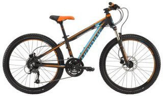 "Haibike Rookie 4.30 24"" 24-G Acera mix von PLANET OF BIKES GmbH, 45127 Essen"