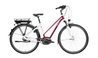 Falter E 9.5 RT von Das Fahrrad, 30853 Langenhagen