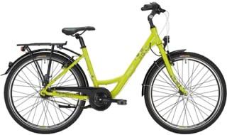 Falter FX 607 Pro von WIECK fahrrad & zubehör, 24601 Wankendorf