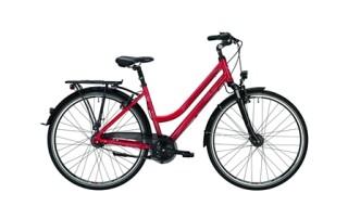 Falter C 5.0 Damen 47cm 8Gang Rücktritt von Schön Fahrräder, 55435 Gau-Algesheim