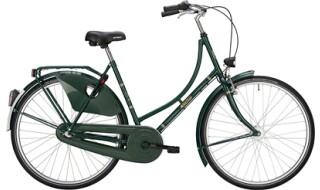 Falter H 1.0, Tannengrün von Bike & Co Hobbymarkt Georg Müller e.K., 26624 Südbrookmerland