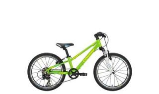 """Conway MS-100 FG """"Light"""" von Bike-Rider Fahrrad-HENRICH, 57299 Burbach-Oberdresselndorf"""