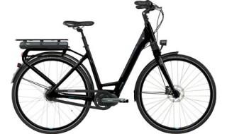 GIANT Prime E+1 RT von Bike Service Gruber, 83527 Haag in OB