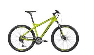 Bergamont Roxtar 4.0 von Zweirad Pritscher, 84036 Landshut