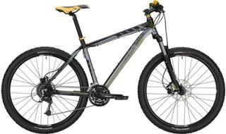"""Morrison Blackfoot 29"""" von Bike Service Gruber, 83527 Haag in OB"""