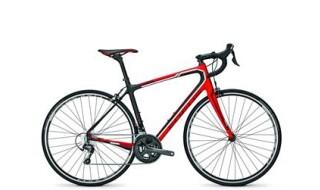 Focus IZALCO Ergoride Carbon von Rupp's Fahrradkiste KG, 91438 Bad Windsheim